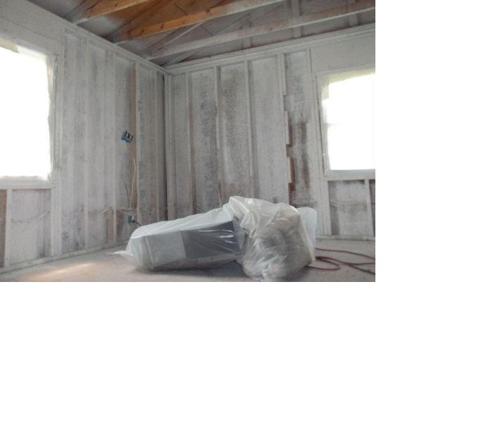 Mold Remediation After