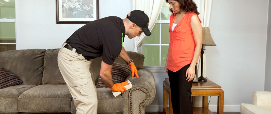 Parma, OH carpet upholstery cleaning